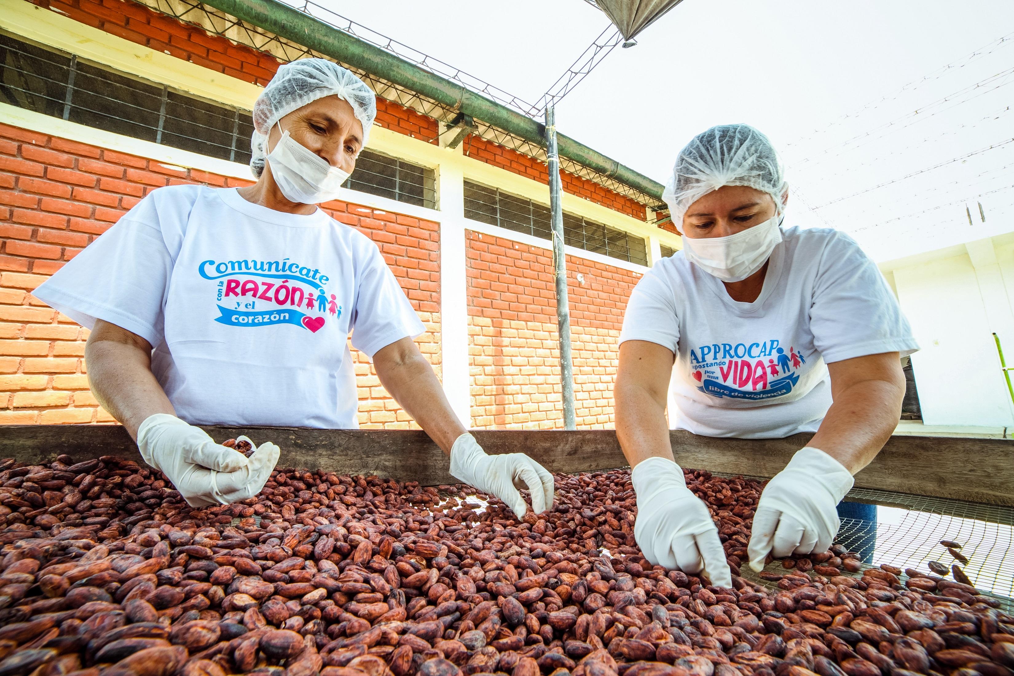 """""""Nos falta valorar la riqueza del cacao piurano"""""""